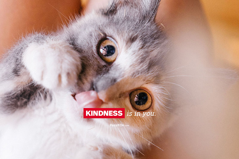 Kindness is in you 1 thumb