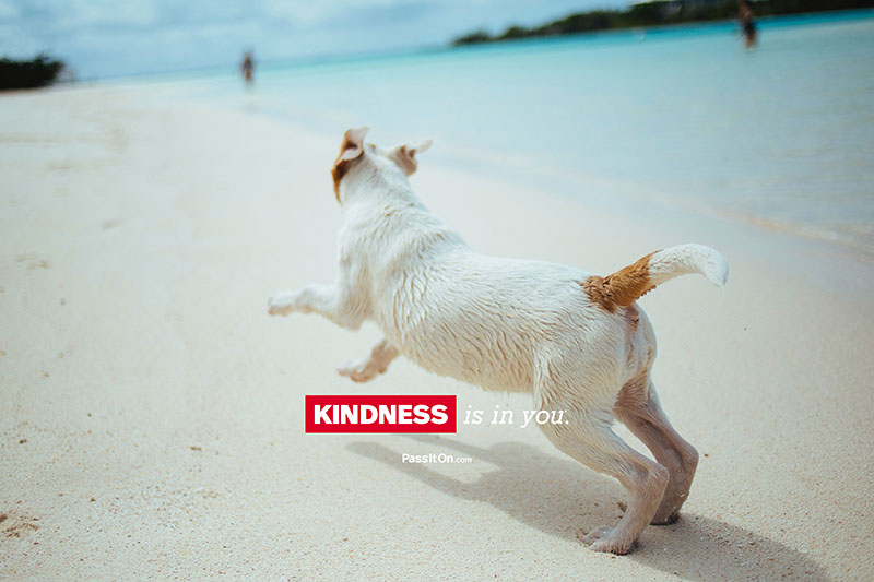 Kindness is in you 3 thumb
