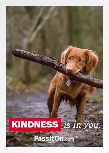 Kindness ecard 2