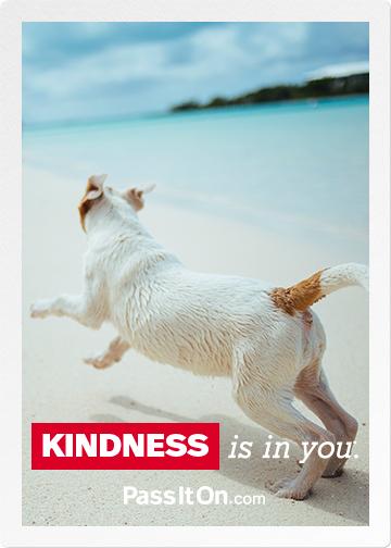 Kindness ecard 3
