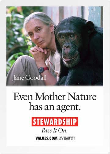 Stewardship postcard