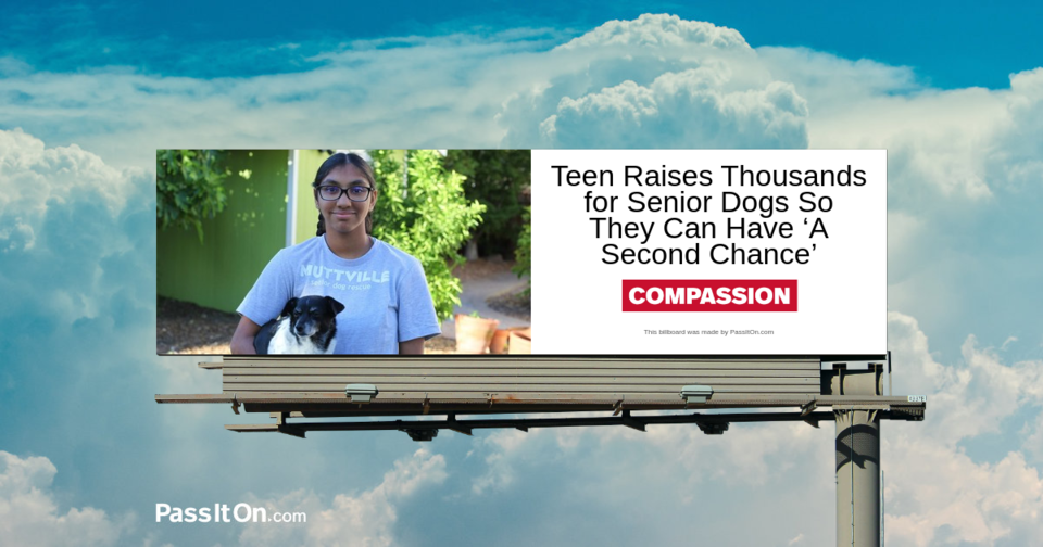 Teen Raises Thousands for Senior Dogs So They Can Have 'A Second Chance'