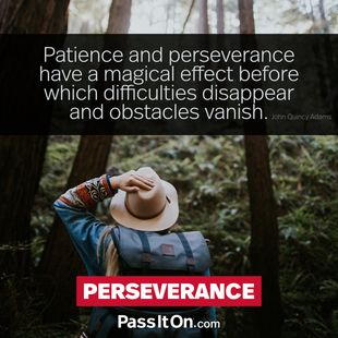 Patience and perseverance have a magical effect before which difficulties disappear and obstacles vanish. #<Author:0x00007f4b6f4eb508>