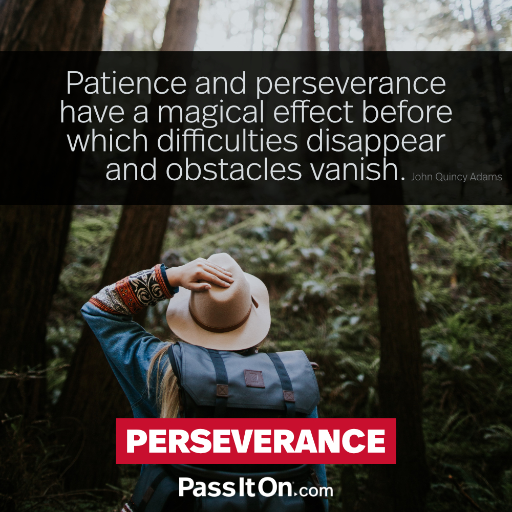 Patience and perseverance have a magical effect before which difficulties disappear and obstacles vanish. —John Quincy Adams