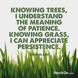 Knowing trees, I understand the meaning of patience. Knowing grass, I can appreciate persistence. #<Author:0x00007f7fba5f7d00>