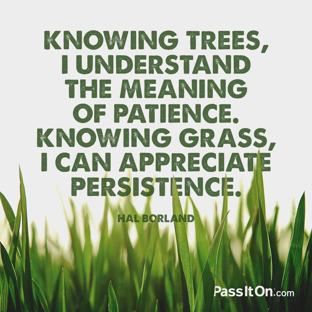 Knowing trees, I understand the meaning of patience. Knowing grass, I can appreciate persistence. —Hal Borland