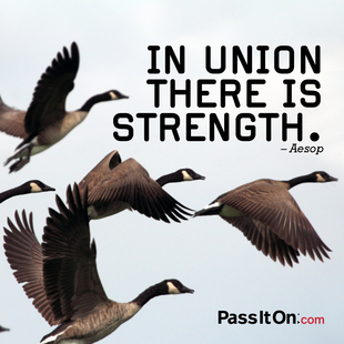 In union there is strength. #<Author:0x00007f4503395428>