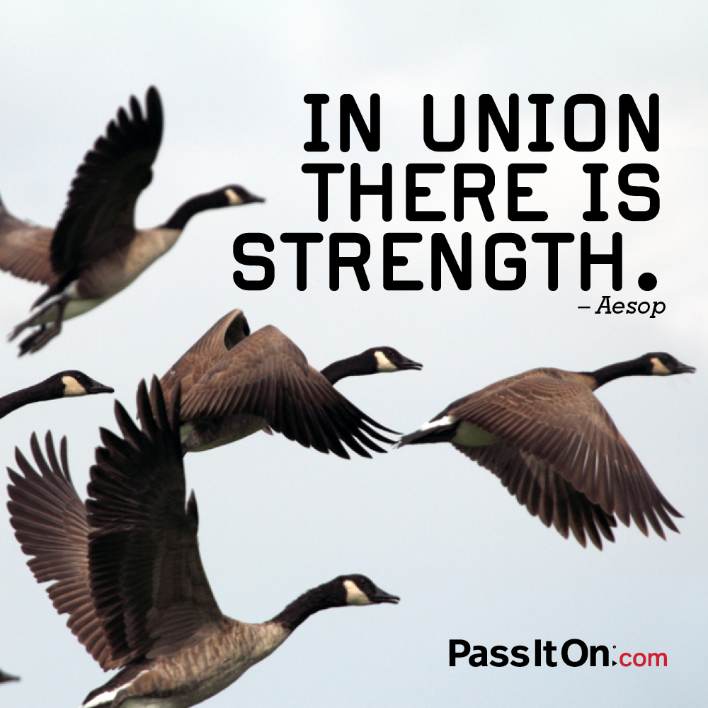 In union there is strength. —Aesop