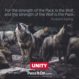 For the strength of the Pack is the Wolf, and the strength of the Wolf is the Pack.  #<Author:0x000055a97cfe1a98>