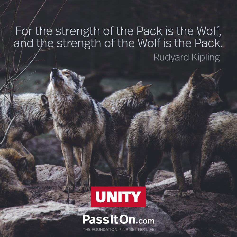 For the strength of the Pack is the Wolf, and the strength of the Wolf is the Pack.  —Rudyard Kipling