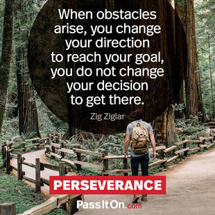 When obstacles arise, you change your direction to reach your goal, you do not change your decision to get there. #<Author:0x00007f69ade11310>