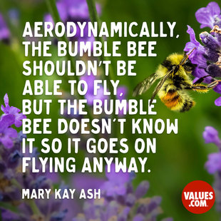 Aerodynamically, the bumble bee shouldn't be able to fly, but the bumble bee doesn't know it so it goes on flying anyway.  #<Author:0x00007f44f918f458>