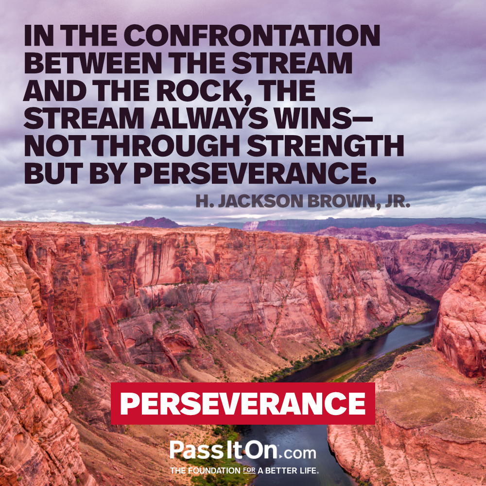 In the confrontation between the stream and the rock, the stream always wins- not through strength but by perseverance. —H. Jackson Brown, Jr.