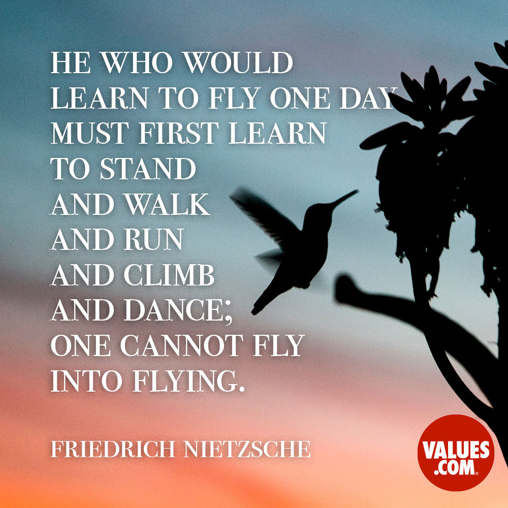 He who would learn to fly one day must first learn to stand and walk and run and climb and dance; one cannot fly into flying. —Friedrich Nietzsche