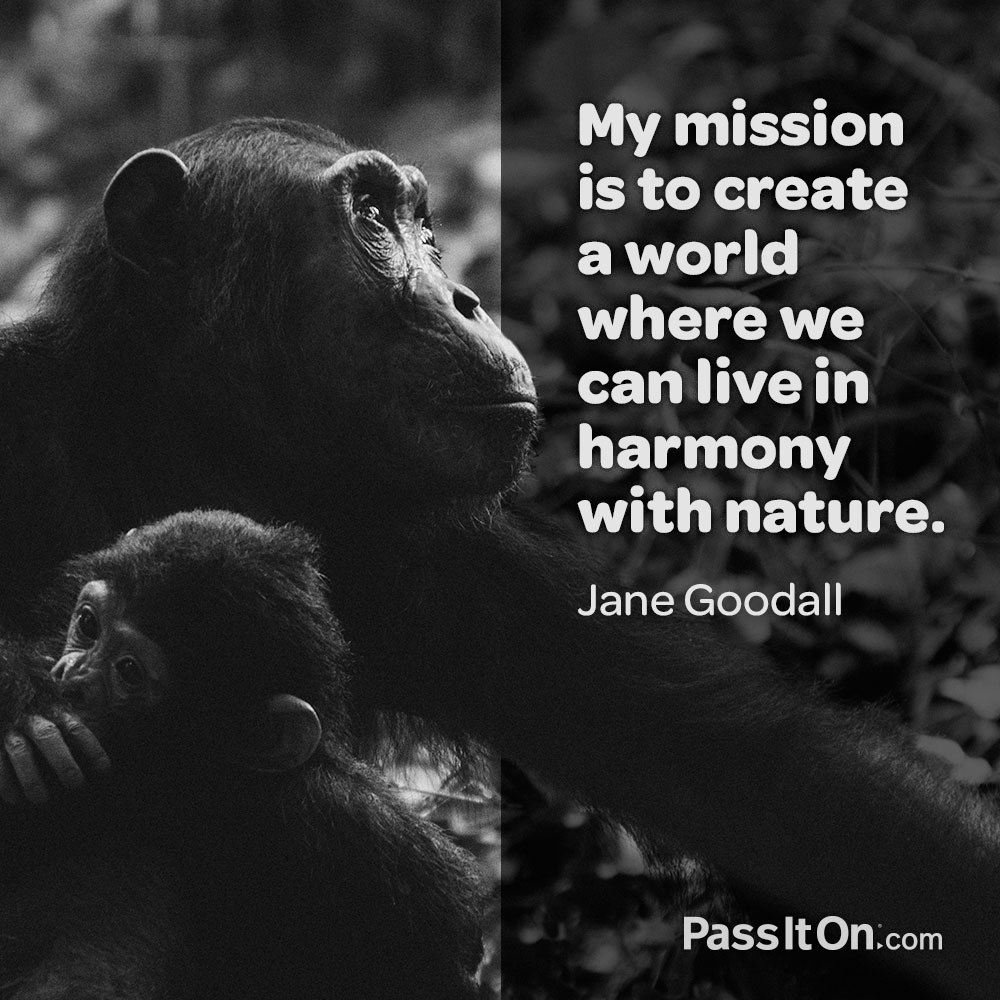 My mission is to create a world where we can live in harmony with nature. —Jane Goodall