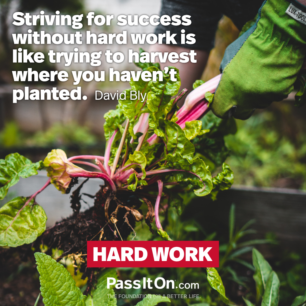 Striving for success without hard work is like trying to harvest where you haven't planted. —David Bly