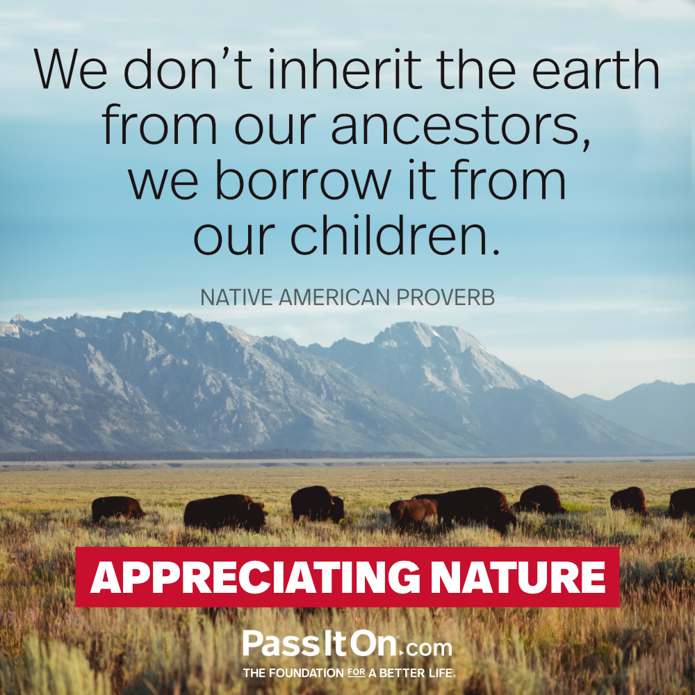 We do not inherit the land from our ancestors, we borrow it from our children.  —Native American Proverb