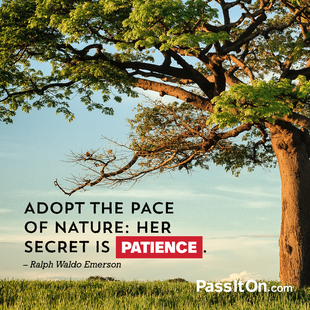 Adopt the pace of nature: her secret is patience. #<Author:0x00007fb16bc6d5a8>