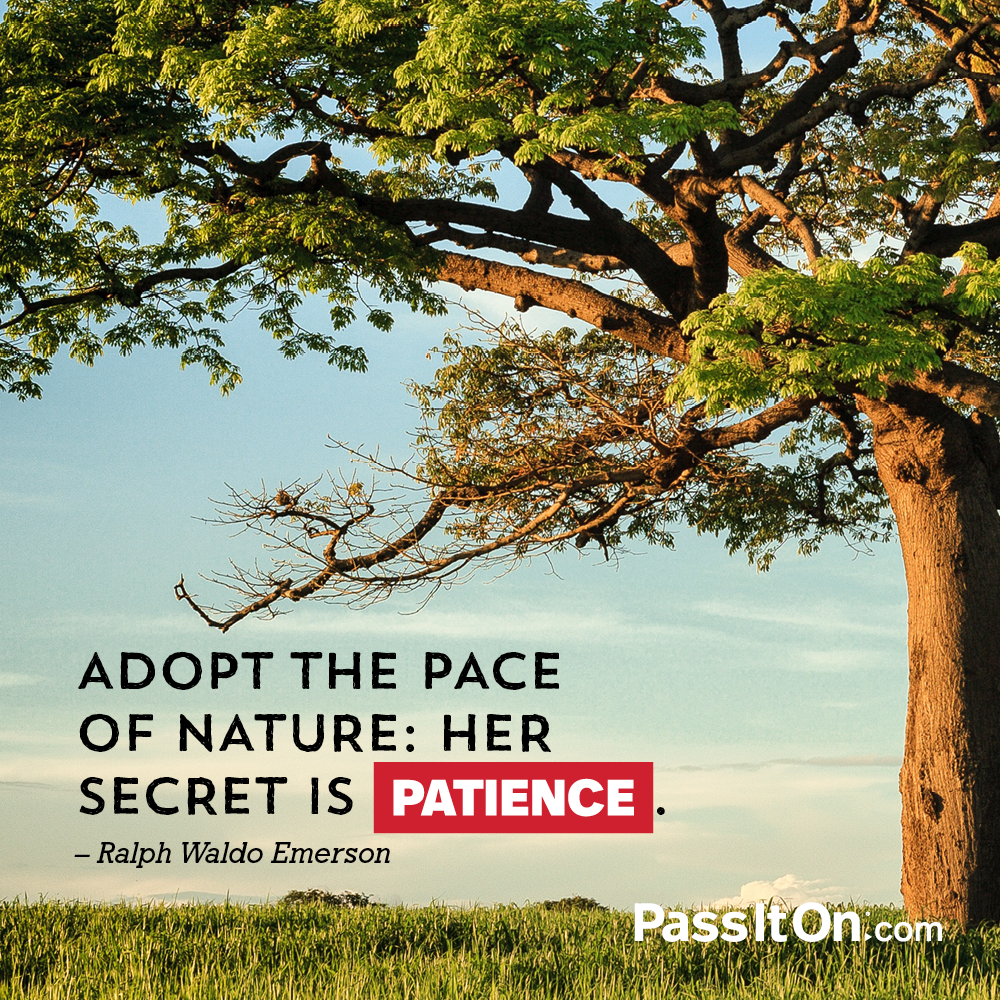 Adopt the pace of nature: her secret is patience. —Ralph Waldo Emerson