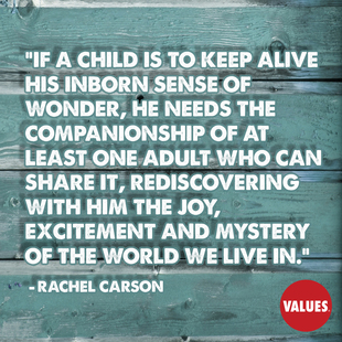 If a child is to keep alive his inborn sense of wonder, he needs the companionship of at least one adult who can share it, rediscovering with him the joy, excitement and mystery of the world we live in. #<Author:0x00007f8736ead6d8>
