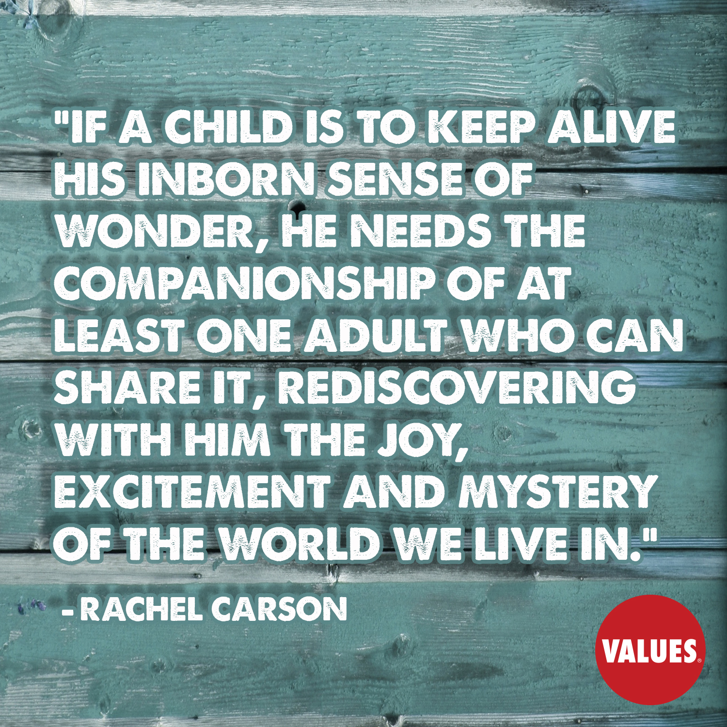 If a child is to keep alive his inborn sense of wonder, he needs the companionship of at least one adult who can share it, rediscovering with him the joy, excitement and mystery of the world we live in. —Rachel Carson