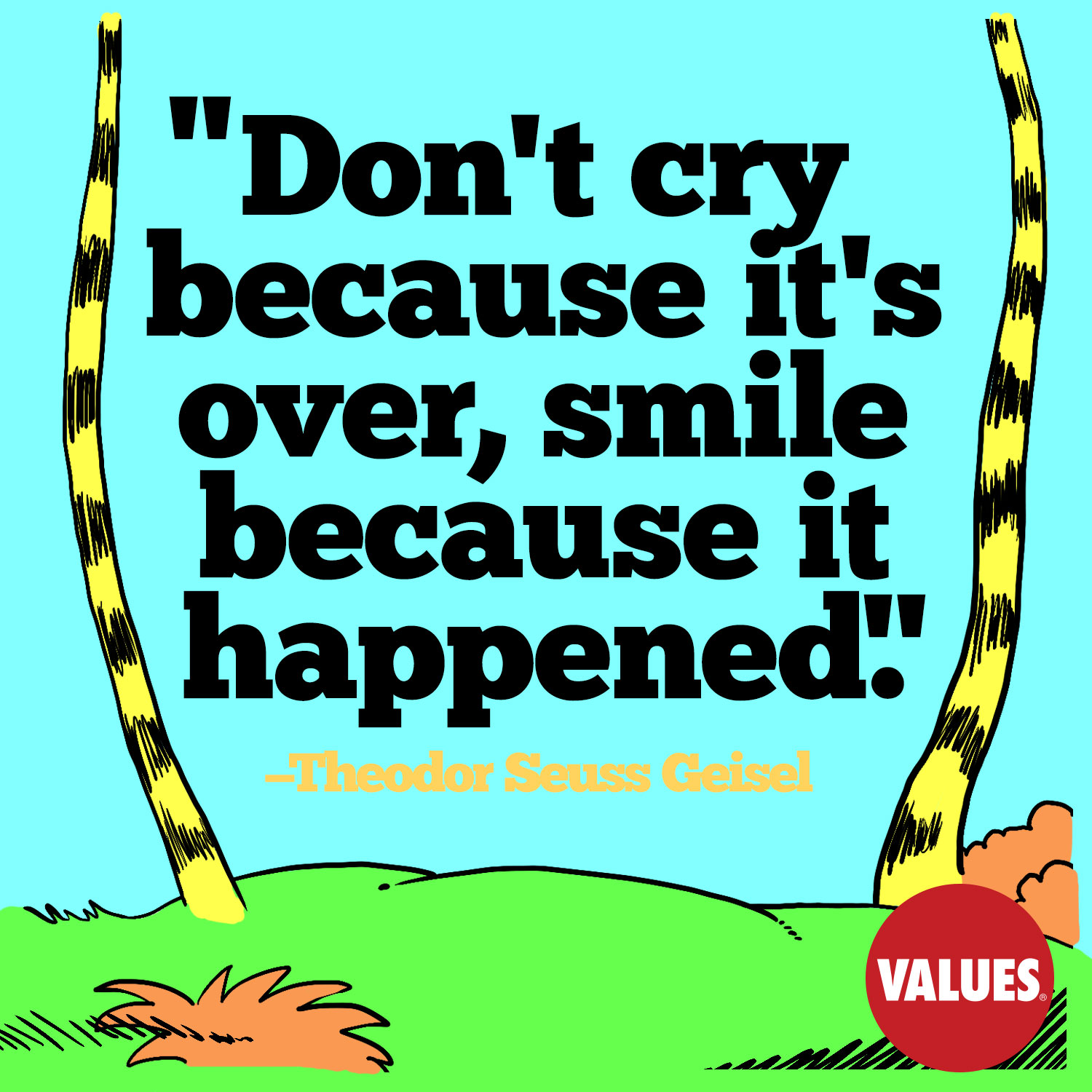 Don't cry because it's over, smile because it happened. —Theodor Seuss Geisel