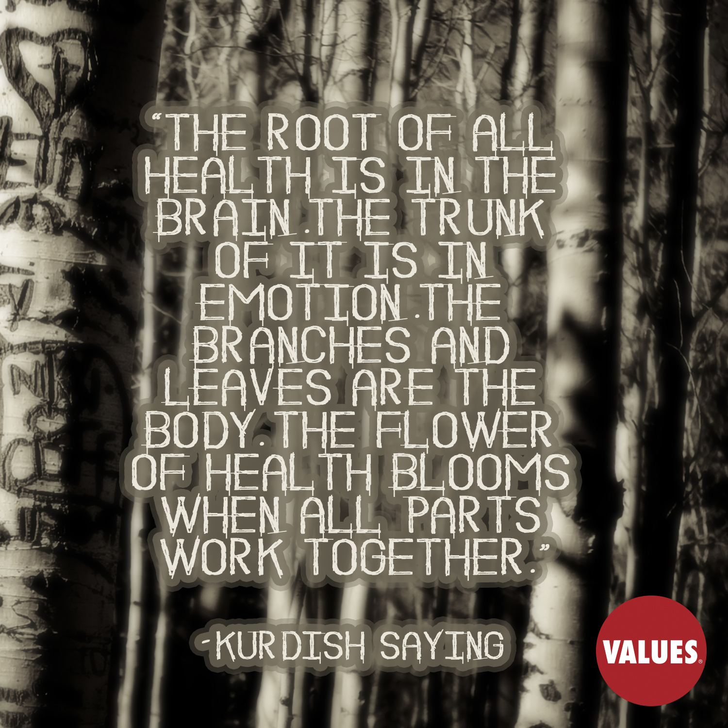The root of all health is in the brain. The trunk of it is in emotion. The branches and leaves are the body. The flower of health blooms when all parts work together. —Kurdish saying