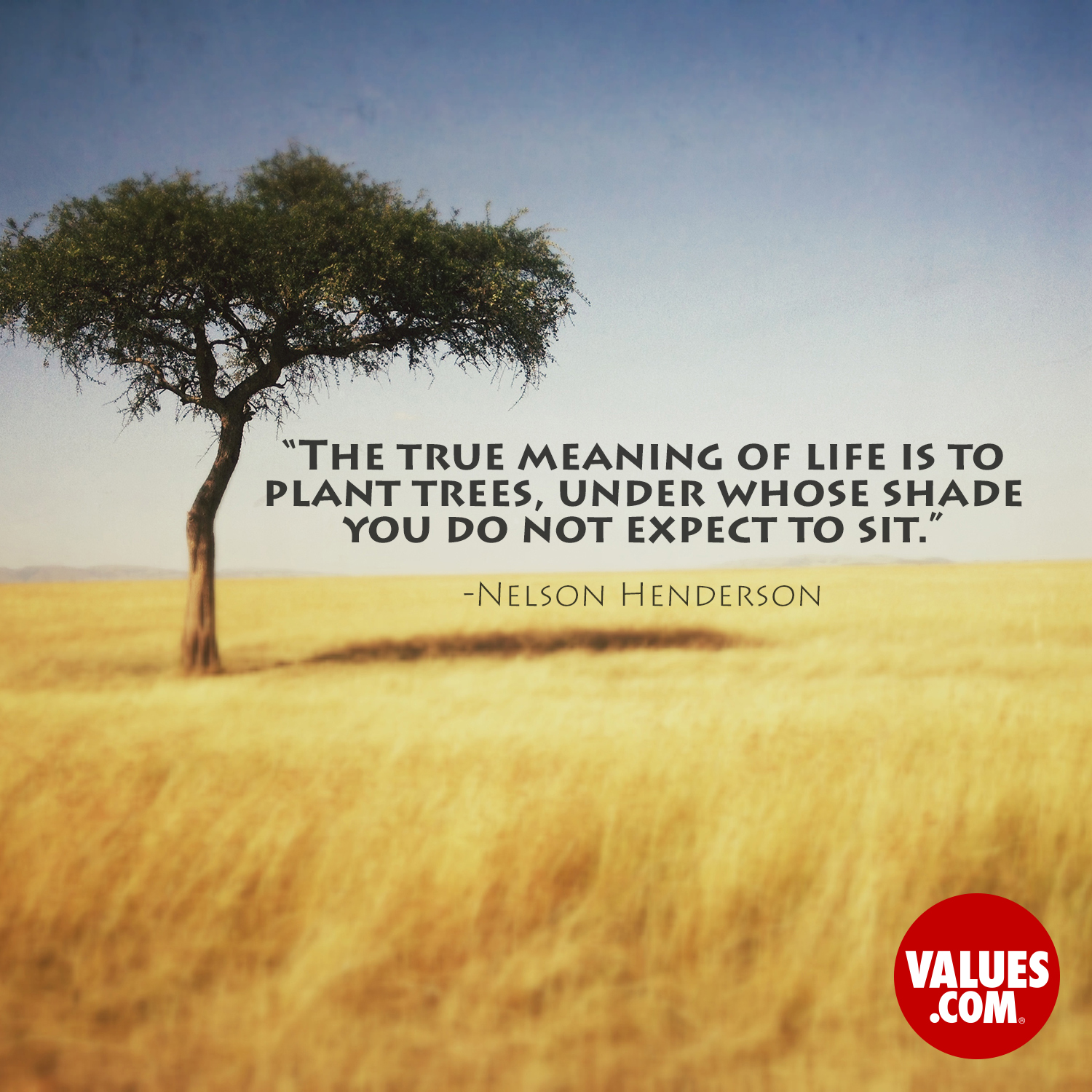 """The true meaning of life is to plant trees, under whose ..."