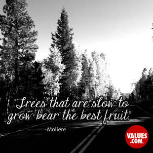 Trees that are slow to grow bear the best fruit. #<Author:0x000055adebb175d0>