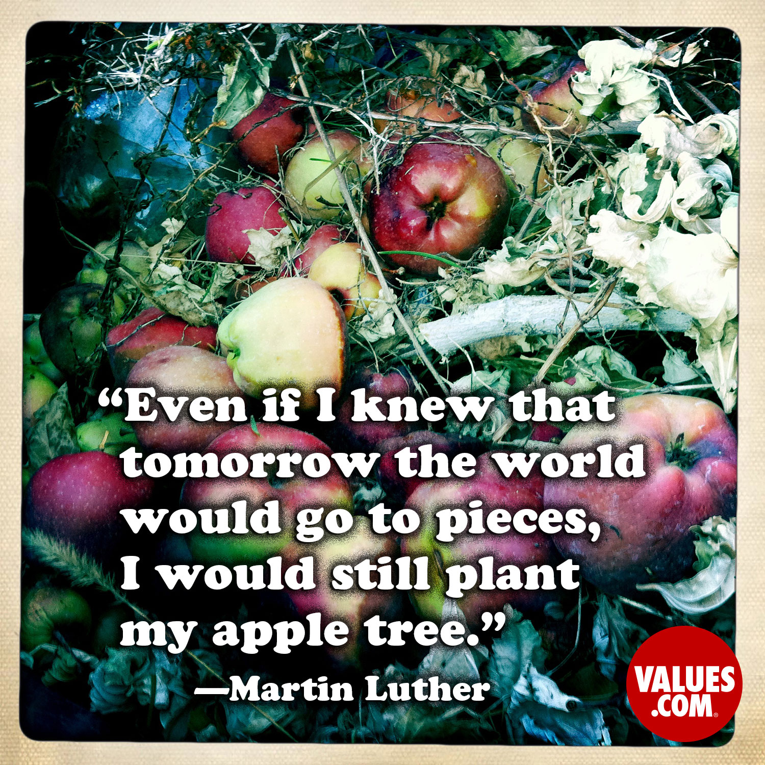 Even if I knew that tomorrow the world would go to pieces, I would still plant my apple tree.  —Martin Luther