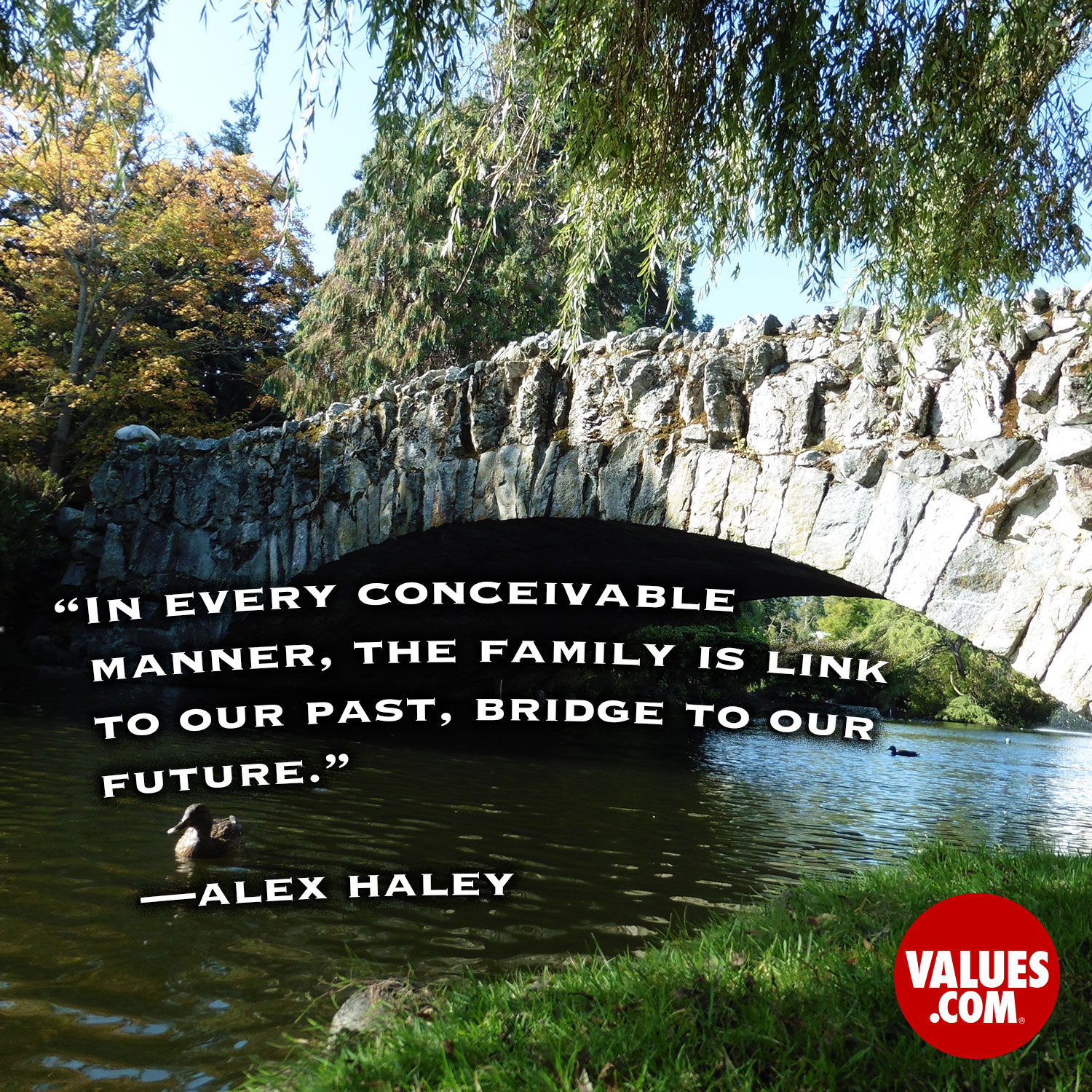 In every conceivable manner, the family is link to our past, bridge to our future.  —Alex Haley