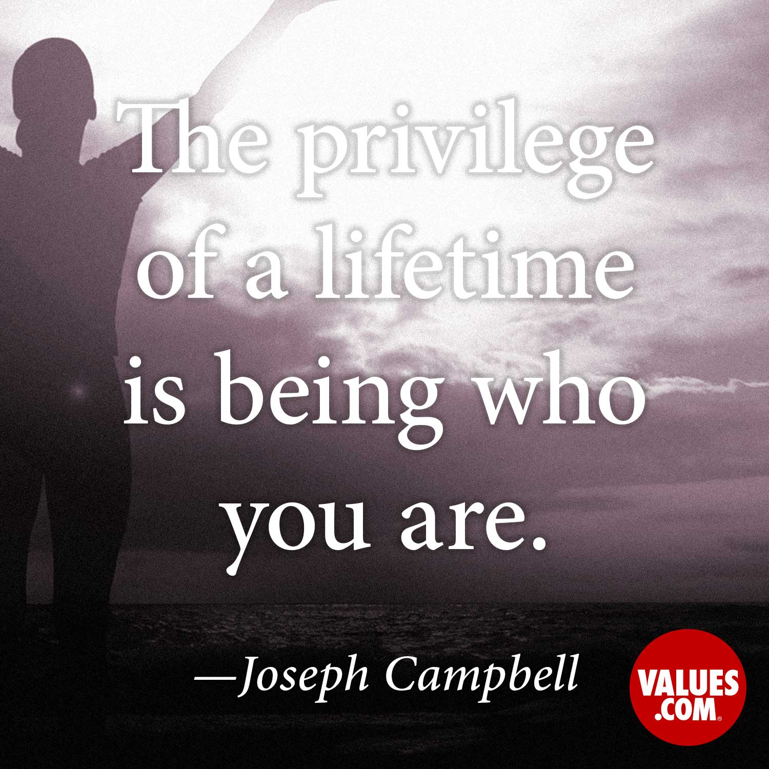 The privilege of a lifetime is being who you are. —Joseph Campbell