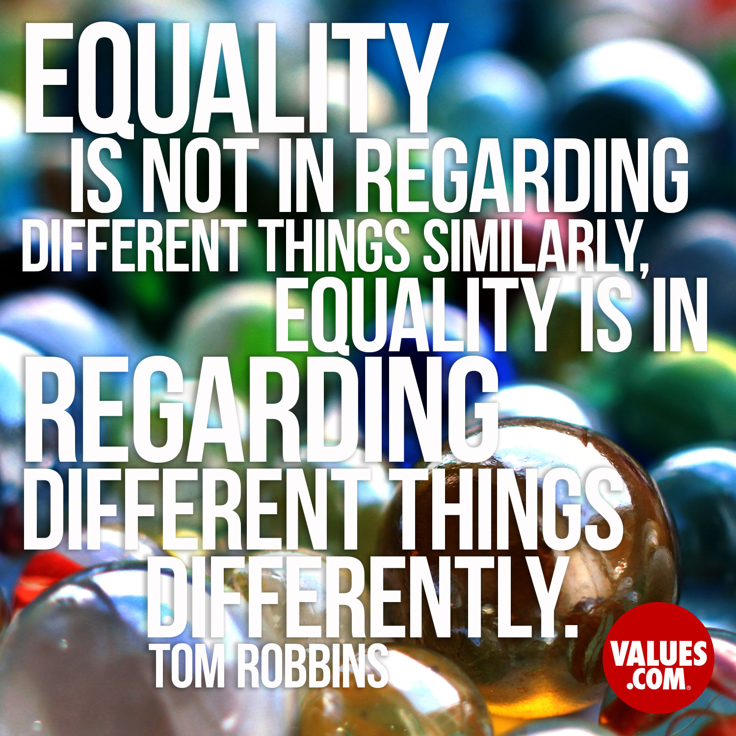 Equality is not in regarding different things similarly, equality is in regarding different things differently. —Tom Robbins