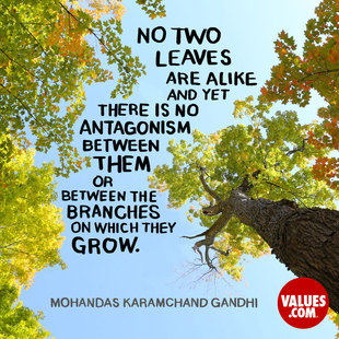 No two leaves are alike, and yet there is no antagonism between them or between the branches on which they grow. #<Author:0x00007fa70f236370>