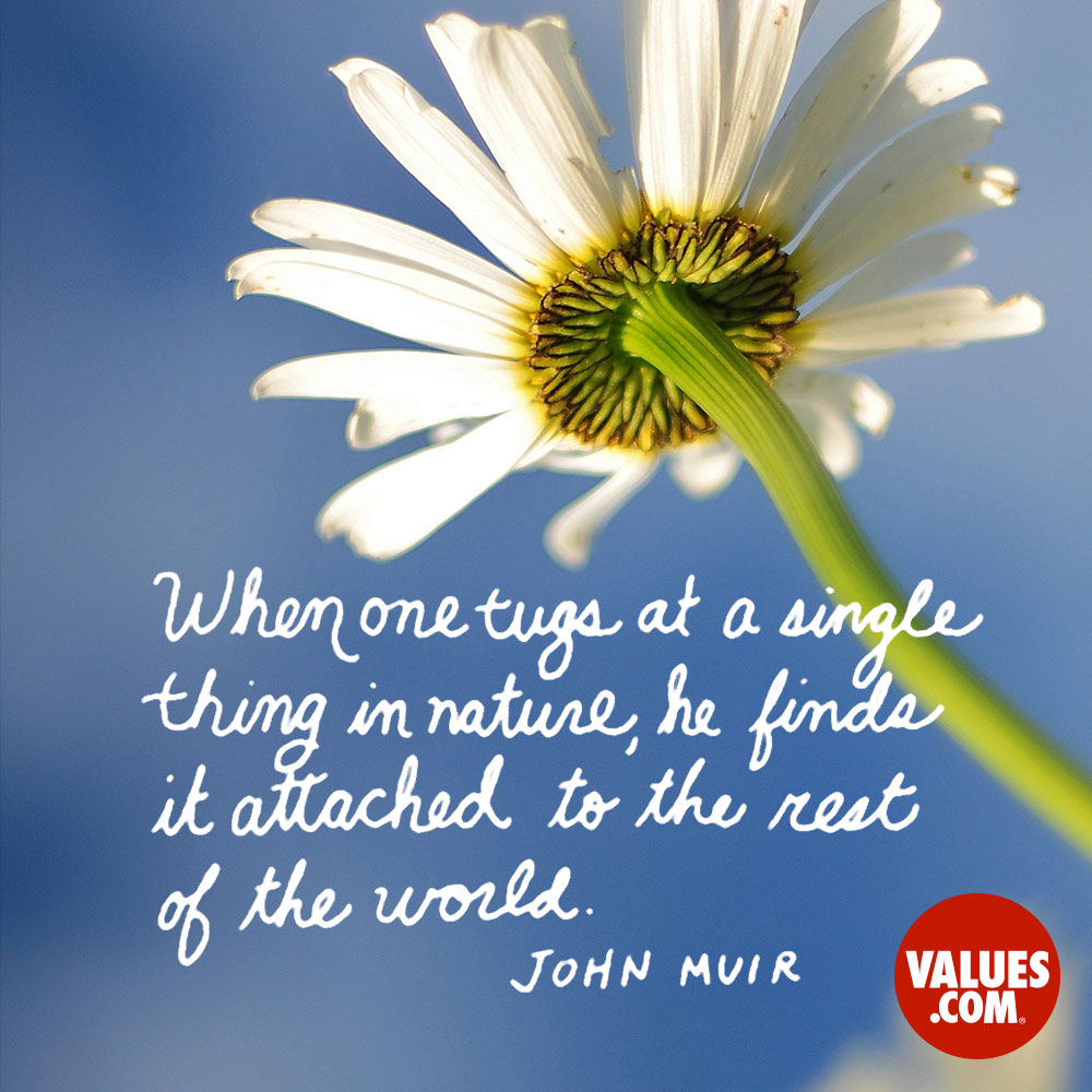 When one tugs at a single thing in nature, he finds it attached to the rest of the world. —John Muir
