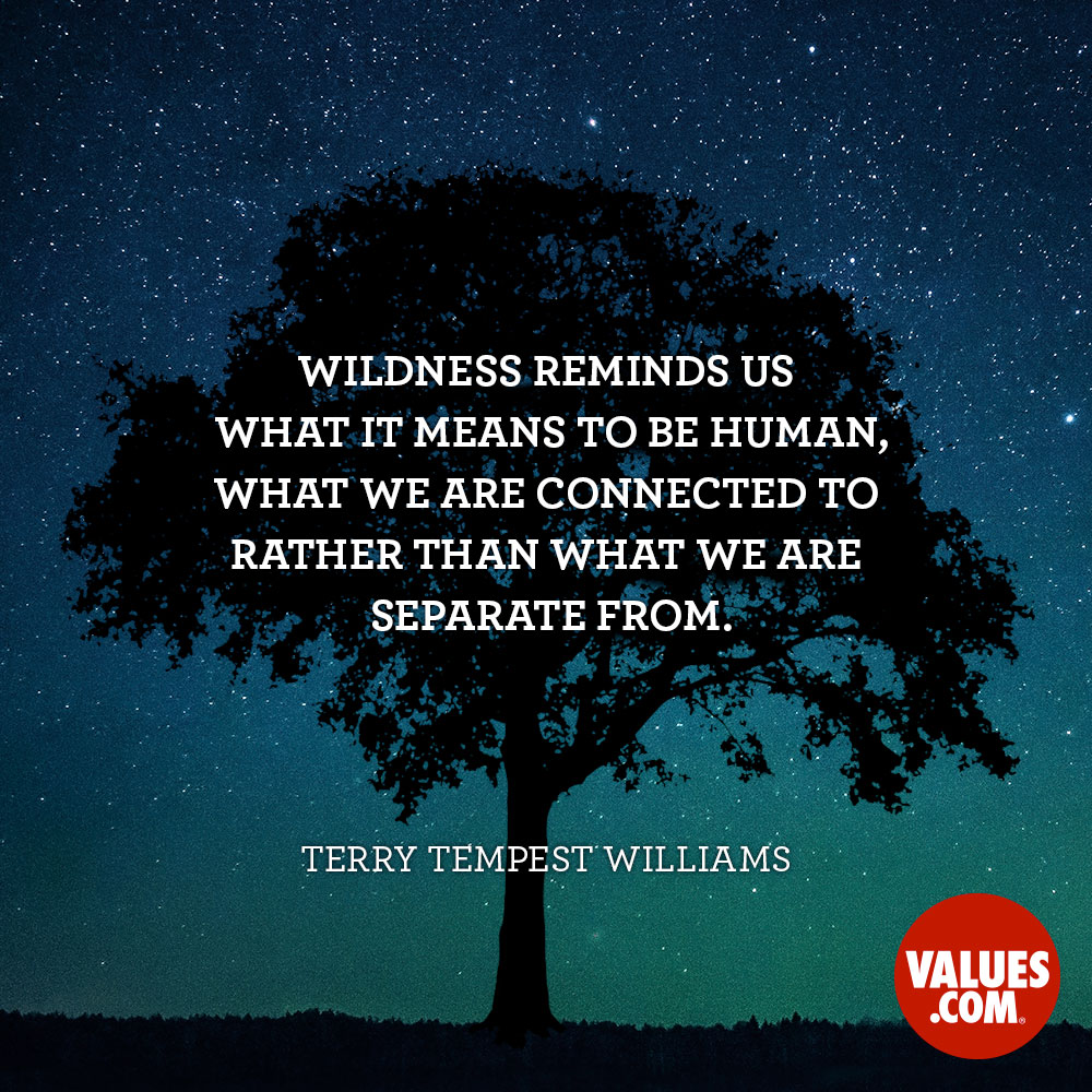 Wildness reminds us what it means to be human, what we are connected to rather than what we are separate from. —Terry Tempest Williams