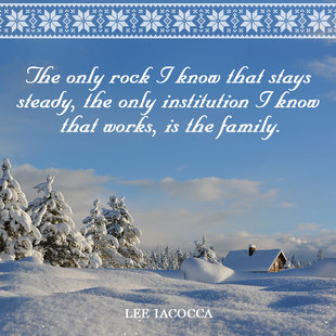 The only rock I know that stays steady, the only institution I know that works, is the family. #<Author:0x00007f874a0360a0>