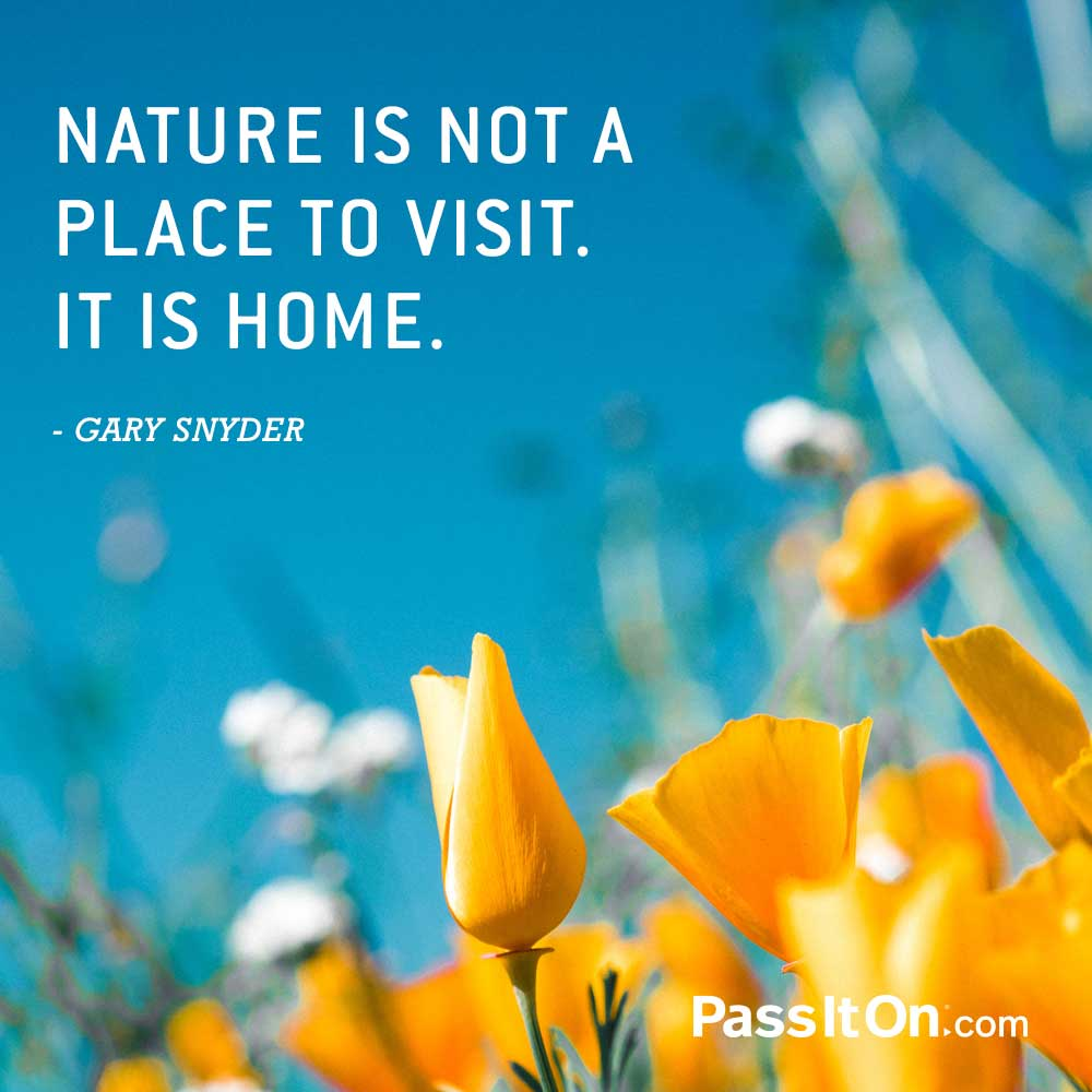 Nature is not a place to visit. It is home. —Gary Snyder