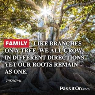 Family: like branches on a tree, we all grow in different directions yet our roots remain as one. #<Author:0x00007f14f002c298>