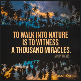To walk into nature is to witness a thousand miracles. #<Author:0x00007f69ae5fc0e8>