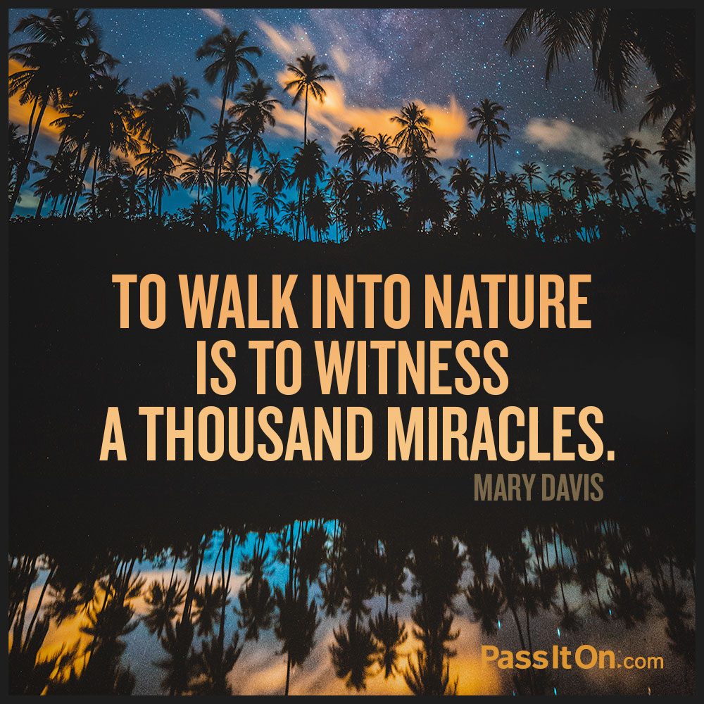 To walk into nature is to witness a thousand miracles. —Mary Davis