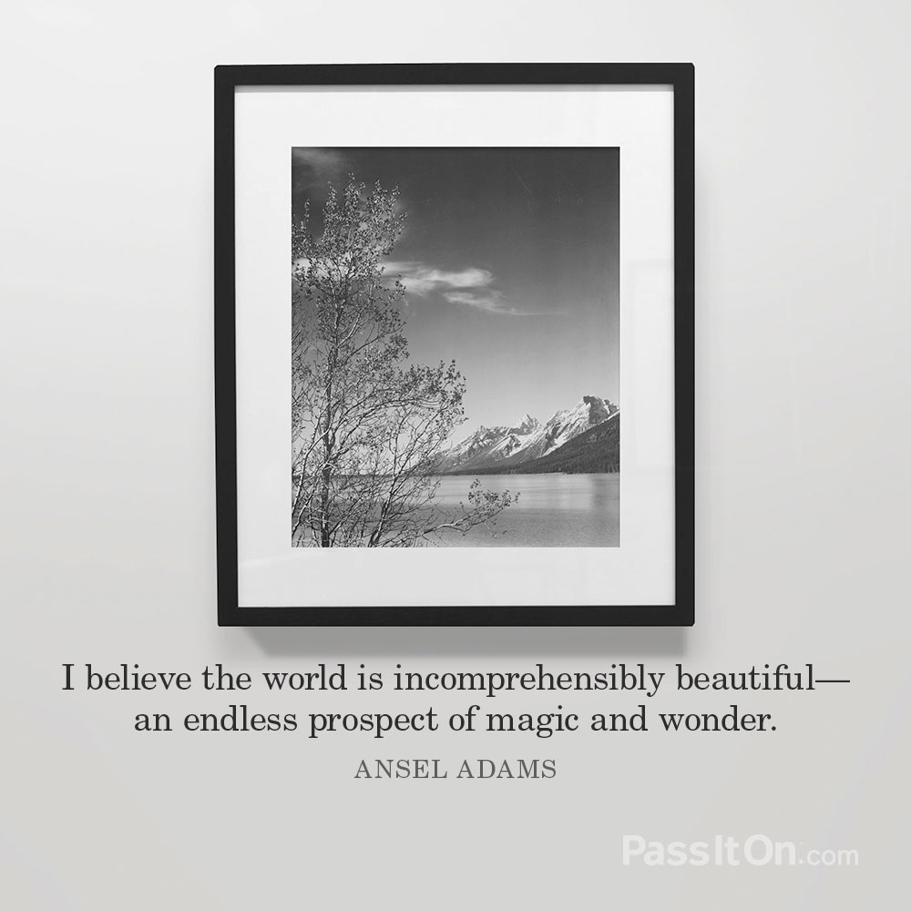 I believe the world is incomprehensibly beautiful—an endless prospect of magic and wonder. —Ansel Adams