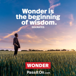 Wonder is the beginning of wisdom. #<Author:0x00007f44fee880d8>