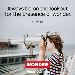 Always be on the lookout for the presence of wonder. #<Author:0x00007f94bf0cef08>