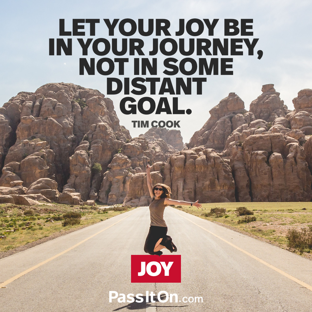 Let your joy be in your journey—not in some distant goal. —Tim Cook