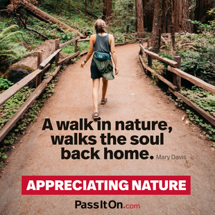 A walk in nature, walks the soul back home. #<Author:0x00007fac00911550>