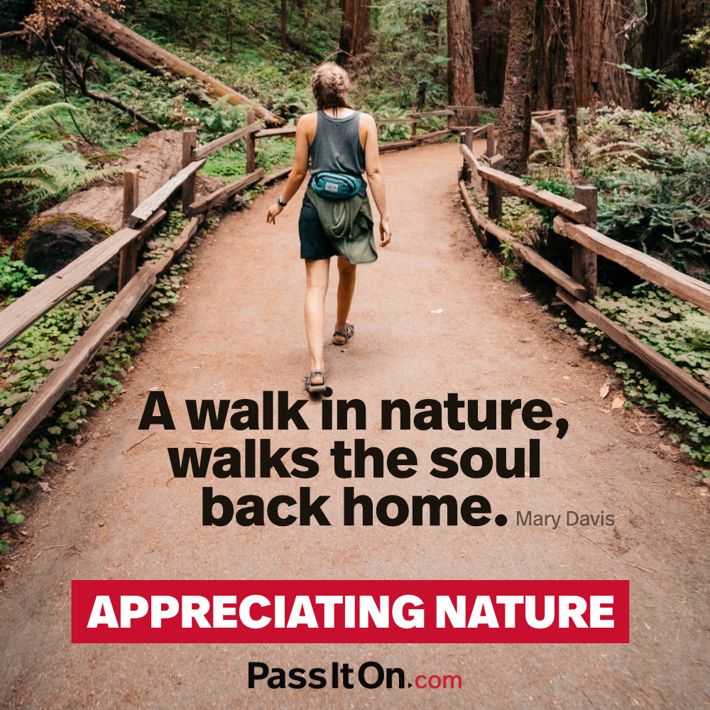 A walk in nature, walks the soul back home. —Mary Davis