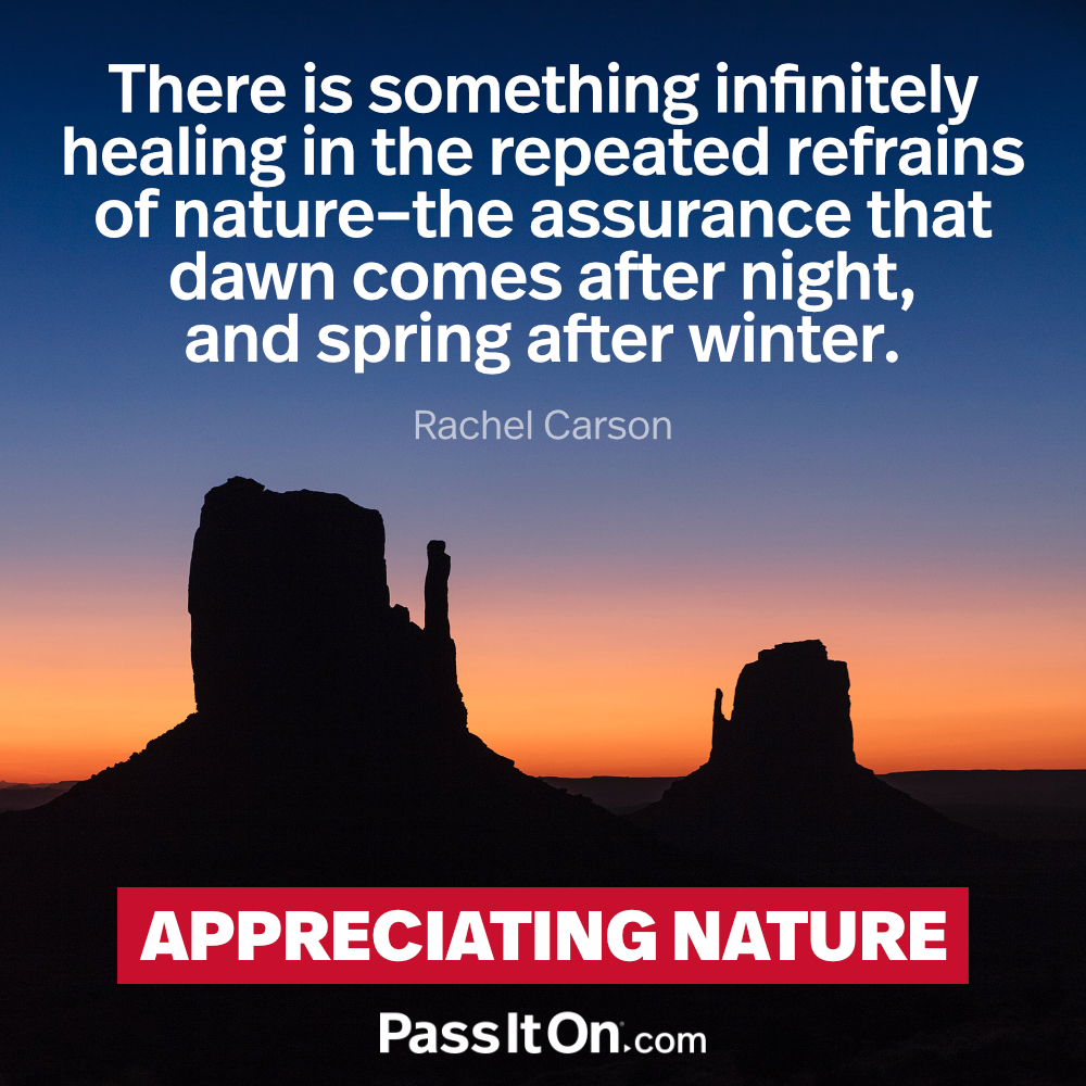 There is something infinitely healing in the repeated refrains of nature – the assurance that dawn comes after night, and spring after winter. —Rachel Carson