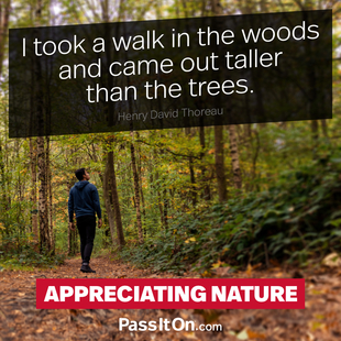 I took a walk in the woods and came out taller than the trees. #<Author:0x00005561ffeb0698>