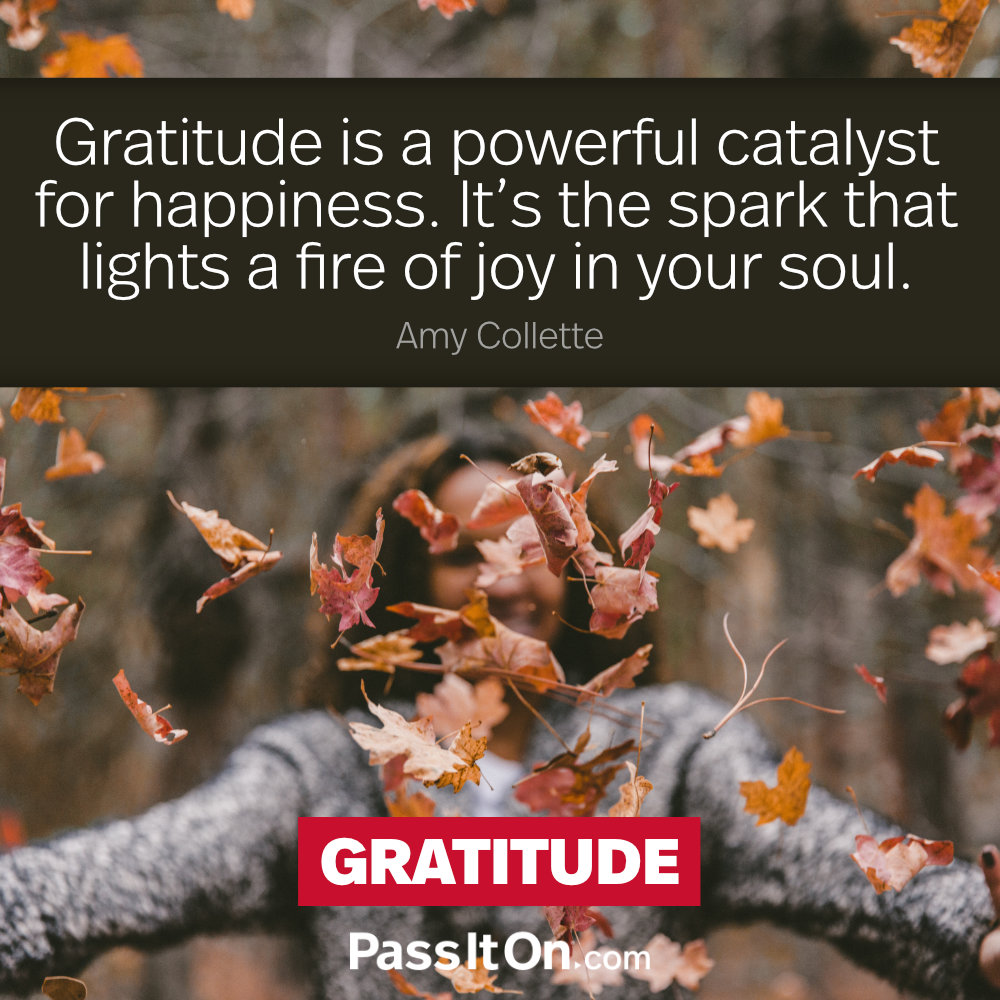 Gratitude is a powerful catalyst for happiness. It's the spark that lights a fire of joy in your soul.  —Amy Collette
